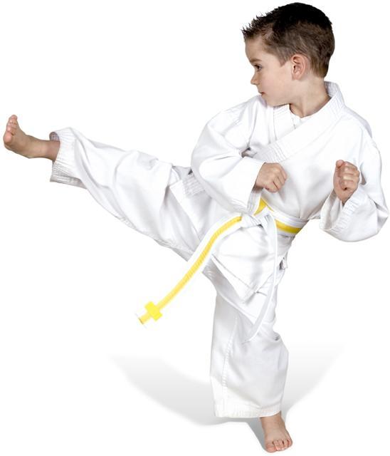 tiny-tigers-karate